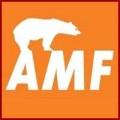 Потолки AMF