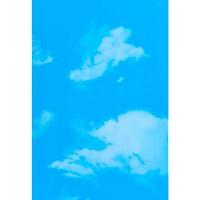 Панель ПВХ Riko (Рико) TM Divo ES 07.10 Небо