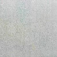 Панель ПВХ Dom Plast (Дом Пласт) 250х7х6000 Термоперевод Иней