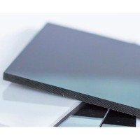 Монолитный поликарбонат Arcosgroup SOTON (Аркосгруп Сотон) 2 мм